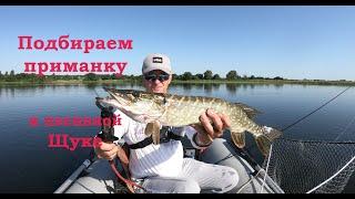 Подбираем приманку к пасивной щуке Ловля щуки с лодки Спиннинг летом Рыбалка на озере