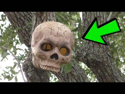Halloween Horror Nights 2019 👻(ORLANDO) Construction Update - Universal Studios News