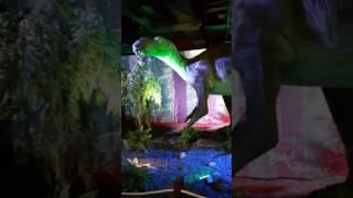 Шоу динозавров. Диноклуб в ЦДМ на ЛУБЯНКЕ (05.01.2017) / DINOCLUB  in the Central Children Shop