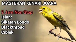 Download lagu MASTERAN KENARI JUARA    2 JAM NON STOP MATERI Sikatan Londo Blackthroad Ciblek
