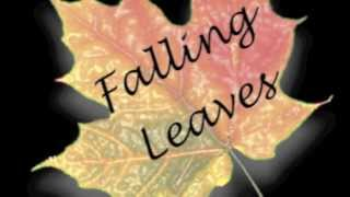 Forgiven Not Forgotten By The Corrs, Covered by Falling Leaves
