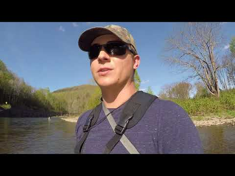Fly Fishing On The Beaverkill