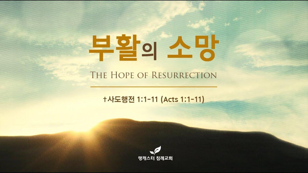 2021년 4월 4일 부활절 주일 설교 - 부활의 소망