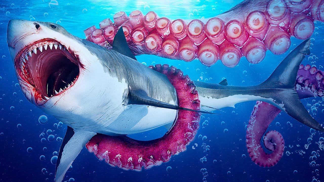 Что, если бы мегалодон и Блуп решили разделить между собой океан - скачать с YouTube бесплатно