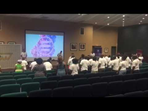 Team building for the e-dinarcoin leaders on conference in Johannesburg, South Africa