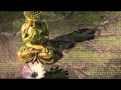 3 Hour Tibetan Healing Music: Shamanic Chakra Meditation, Calming Music, Meditation Music