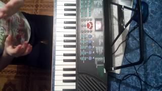 Королёк птичка певчая на синтезаторе  правая рука