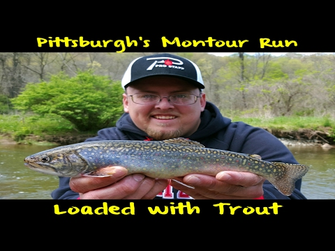 Trout Fishing Pittsburgh's Montour Run