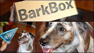 ★BarkBox★ Open Box Ruff-view #2 w/ Guest Star BRISBANE! Thumbnail