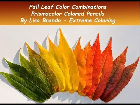 100+ ideas Free Coloring Pages Of Autumn Leaves on xchristmastree ...   360x480