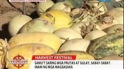 Balitang Amianan: Kauna-Unahang Harvest sa Calasiao, Pangasinan, Tunghayan