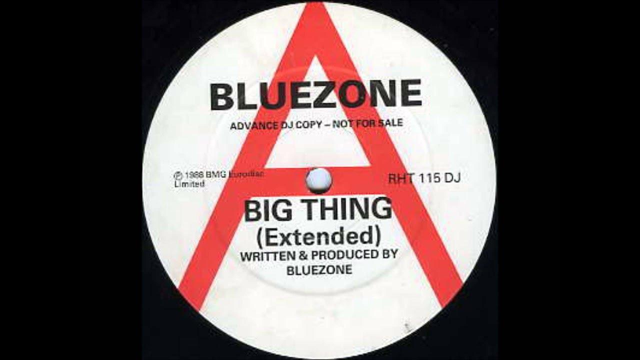 BLUEZONE   BIG THING