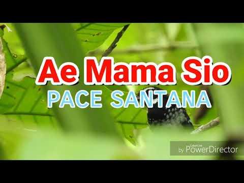 AE MAMA SIO LIRIK _ Pace Santana