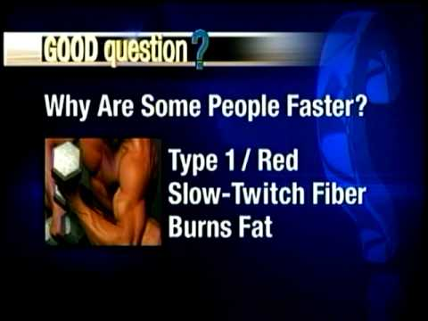 Good Question: Why are some people faster than others?