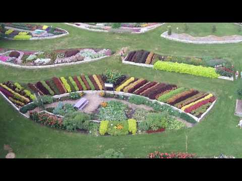 2016 AAS LDC Video: Summer Flowers in Noelridge