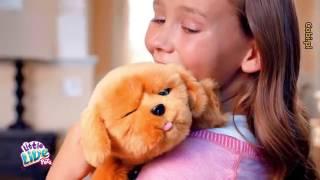 COBI LITTLE LIVE PETS INTERAKTYWNA SZCZENIACZEK - MÓJ PRZYJACIEL TULUŚ