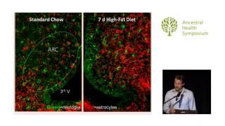 What Causes Leptin Resistance? — Stephan Guyenet, Ph.D. (AHS14)