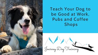 Teach Your Dog to be Good at Work, Pubs and Coffee Shops