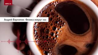 Андрей Варламов: Физика вокруг нас