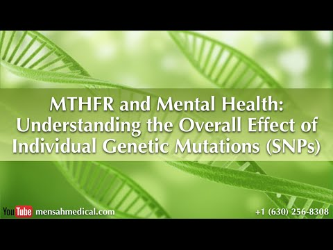 MTHFR and Mental Health: Understanding the Overall Effect of Individual Genetic Mutations SNPs