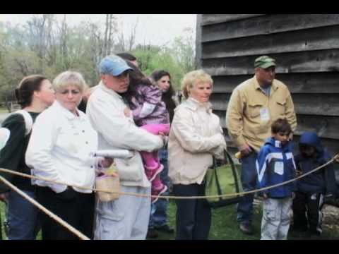 Historic Hudson Valley Sheep to Shawl May 2010, Rachel Wallace reports
