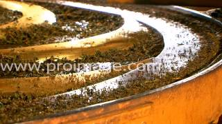 Производство чая. Второй этап. Скручивание.(, 2014-10-16T09:52:19.000Z)