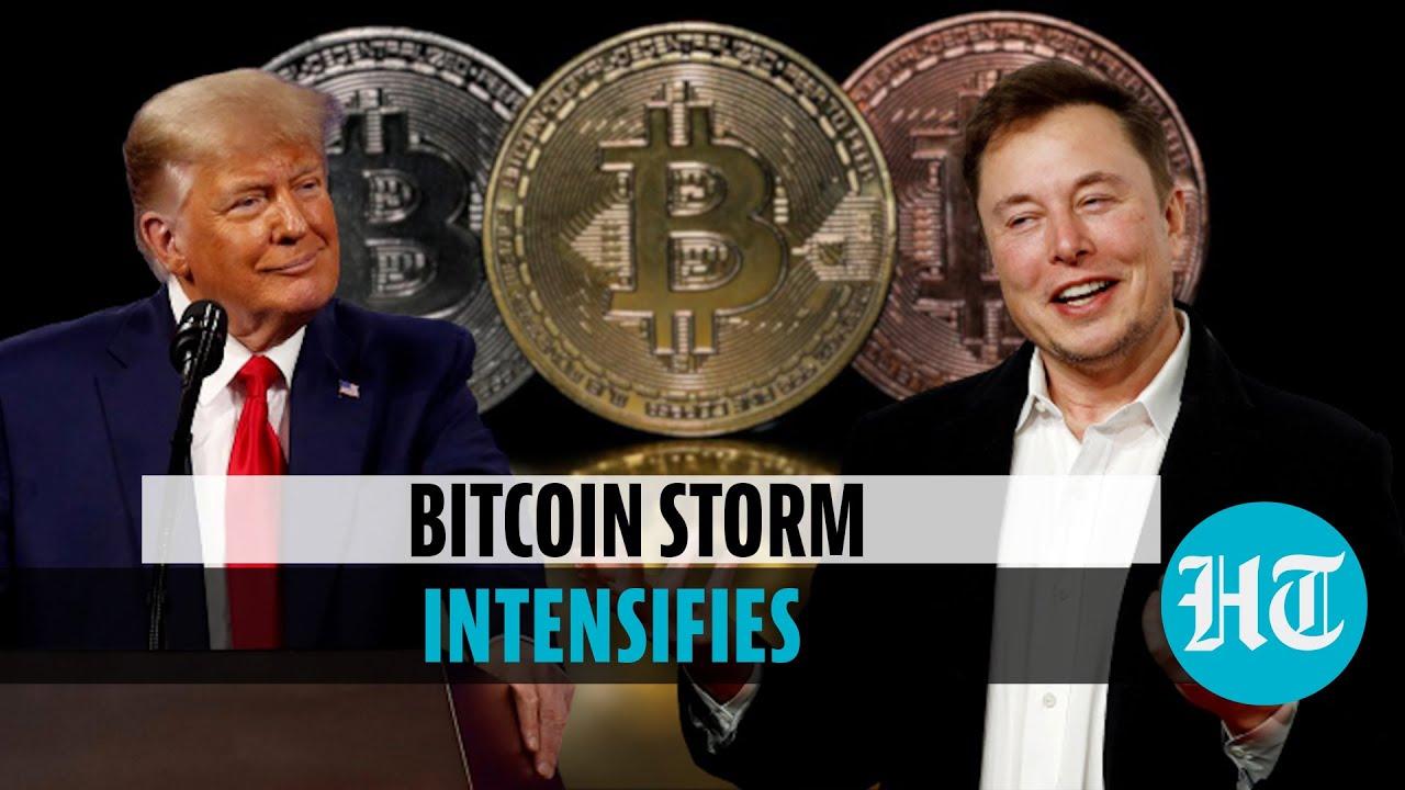 donald bitcoin 1 xmr į btc