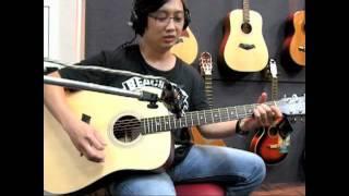 頂級tanger td 52桃花心木全單板木吉他