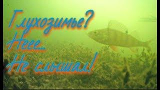Рыбалка на озере в глухозимье. ПОДВОДНОЕ ВИДЕО - Болен Рыбалкой№456
