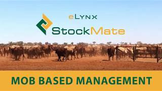 eLynx StockMate Tutorial 5 - Mob based inventory systems