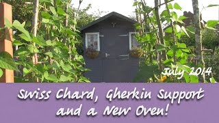 Katie's Allotment - July 2014 - Swiss Chard, Gherkin Support and a New Oven!