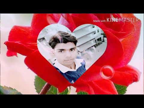 Sunny Kumar 8383990882