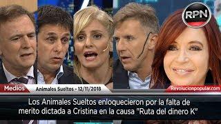 Los Animales Sueltos enloquecieron por la falta de merito dictada a Cristina