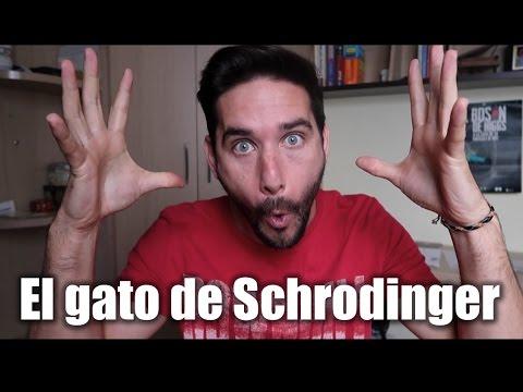 La paradoja del gato de Schrodinger - ¿Vivo o muerto?