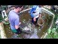 PEIXES  A Pesca Milagrosa - YouTube
