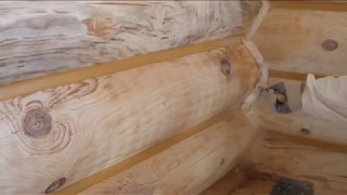 видео Обзор шовных герметиков для сруба