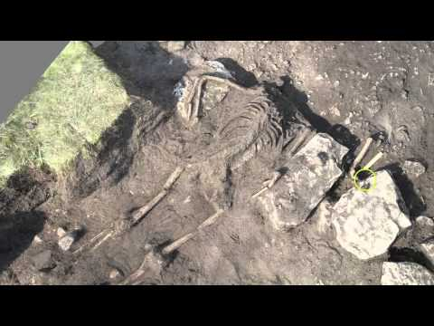 Ancient massacre being discovered by archaeologists, Lund University