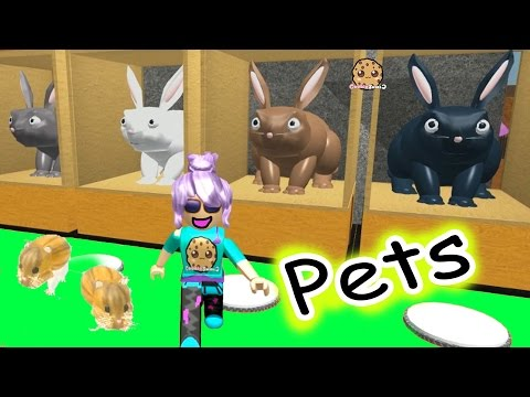 Thumbnail: Hamsters In The House - Roblox Animal House Pets - Online Game Let's Play Random Fun Video