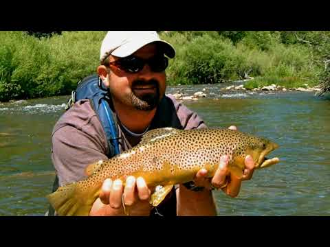 Fly Fishing in Utah - Award Winning Guides on the Provo River near SLC