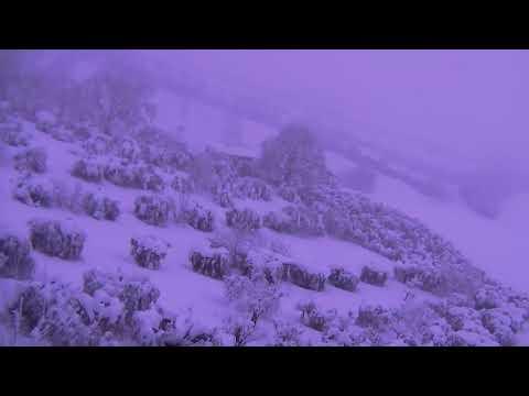 Nevicata Sant'Omero Gen2017 06