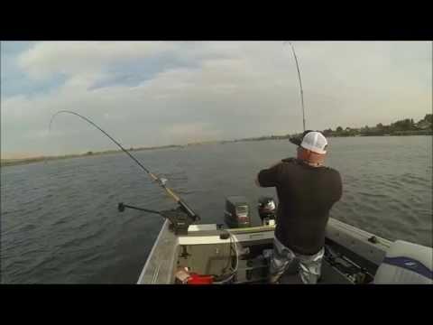 salmon fishing Columbia river Pasco Washington