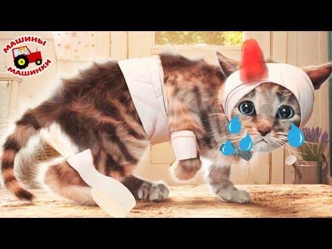 ПРИКЛЮЧЕНИЕ МАЛЕНЬКОГО КОТЕНКА мультфильм про котят мультик для детей и малышей #ММ