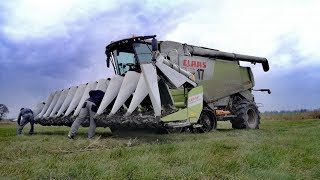 Koszenie kukurydzy na ziarno  Fendt 936 Vario  Claas Lexion 770 TT fliegl panther