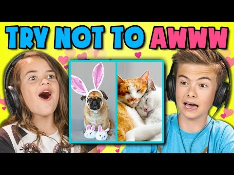 Thumbnail: KIDS REACT TO TRY NOT TO AWWW CHALLENGE #2