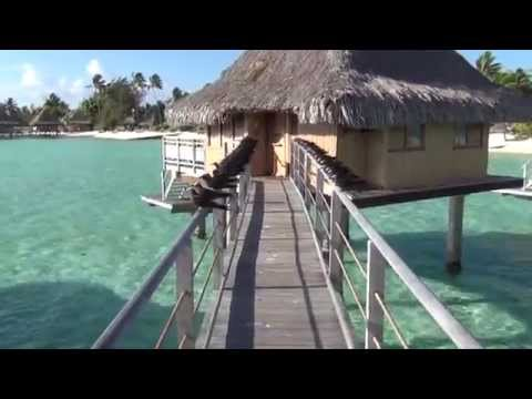 Holiday in the South Pacific --  Moorea and Bora Bora