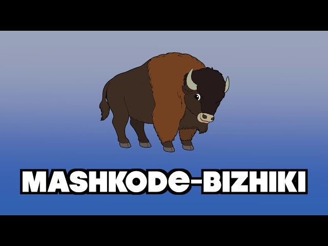 Anishinaabemowin Learning Video for Children