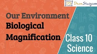 Biological Magnification, Our Environment - CBSE Class 10 Science (Chemistry)