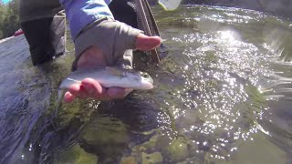 Fishing in Clackamas County Lakes and Rivers