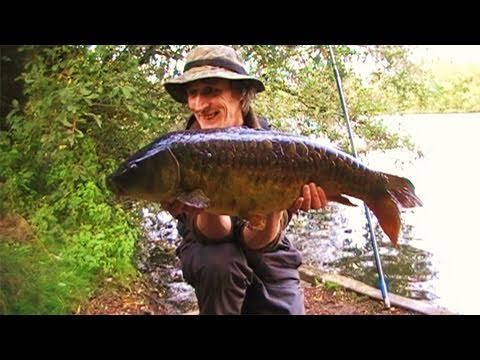 The local pond part 5 evening session carp fishing for Local fishing ponds