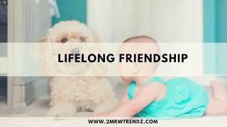 How to Maintain Lifelong Friendship | Whatsapp Status